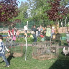 Контактный зоопарк в гостях у д/с в Резиденции Рублево