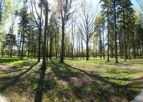 Лесопарковая зона в Резиденции Рублево, весна 2017